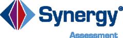 Synergy Assessment